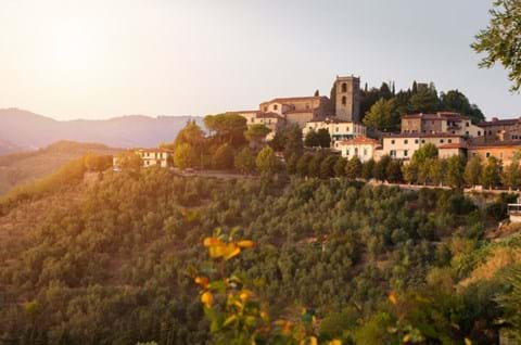 See Montecatini on guided Tuscany holiday