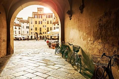 Guided tour in Lucca