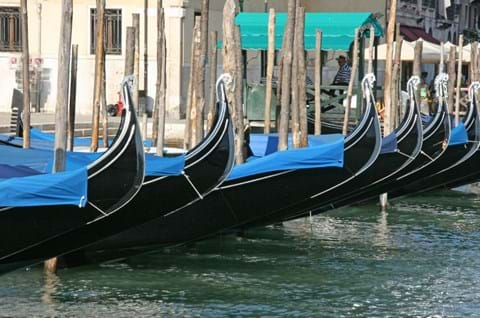 See the iconic Gondolas on your guided Venice tour